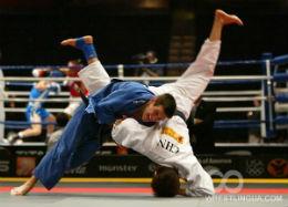 1287263053_judo.jpg (15.12 Kb)