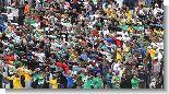 17_brazil__egipet8.jpg (98.88 Kb)
